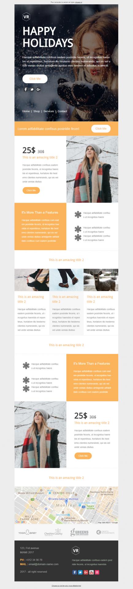 modèle newsletter pour les soldes d'hiver