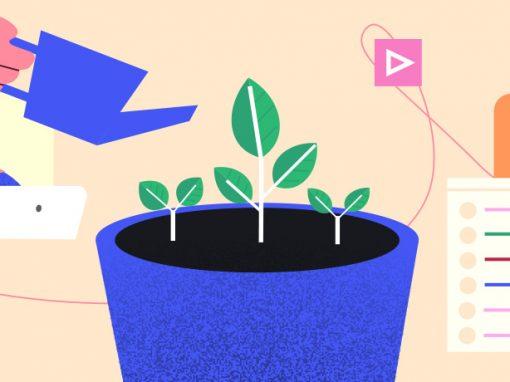 Guide lead nurturing